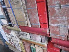 Brick Books? Book Bricks?
