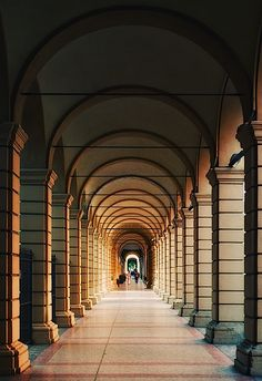 The reoccurring structure of the pillars (form) in this image creates repetition.