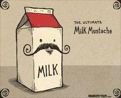 Fabulous Milk Moustache