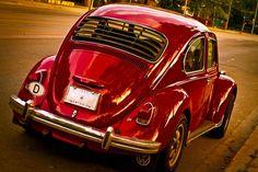 Beetle = Love