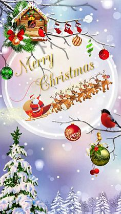 Christmas Status, Merry Christmas Pictures, Merry Christmas Wallpaper, Merry Christmas Images, Christmas Wishes, Christmas Greetings, Christmas Themes, Christmas Templates, Christmas Clipart