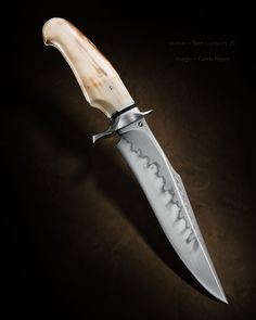 """Killer Instinct"" Maker: Sam Lurquin, JS Website: samuel-lurquin.com Blade Length: 7 1/2"" Overall Length: 12"" Blade: W2 Handle: Walrus"