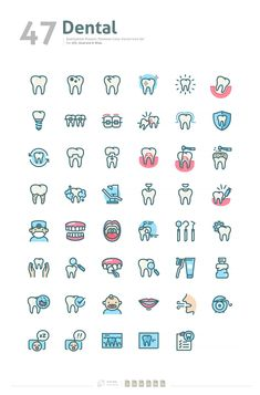 Dental Premium Color Vector Icon Set by BomSymbol on @creativemarket