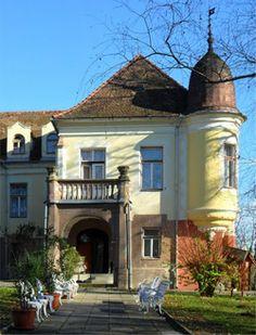 Baranya megye kastély Hungary, Mansions, House Styles, Home Decor, Decoration Home, Manor Houses, Room Decor, Villas, Mansion