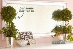 Gorgeous Greenery on OneKingsLane.com