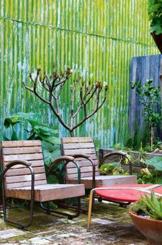 urban garden designs
