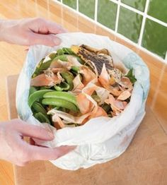 Green Kitchen - Home Composting Boosts Sustainability
