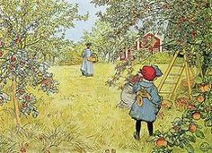 Farm Paintings - The Apple Harvest  by Carl Larsson