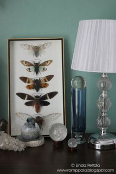 Livingroom arrangement, butterfly collection, crystal ball, white lamp