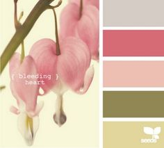 color swatch card inspiration ... pink bleeding heart flowers ... muted colors in lavender, rose, pink, olive and khaki ...