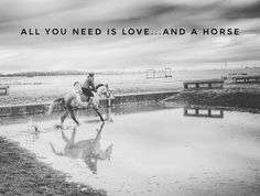All you need is Love...and a Horse