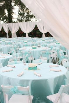 Tiffany Blue Wedding - Wedding Site
