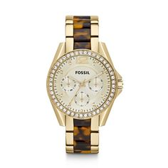 Fossil Riley Multifunction Stainless Steel Watch – Gold-Tone with Tort