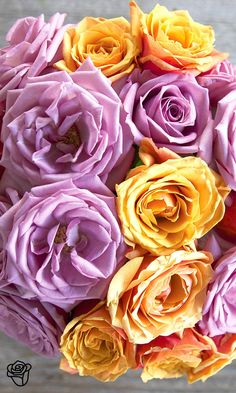 """You can""""t go wrong with this """"Darling"""" combination of orange and lavender roses. Like all of our Bouqs, they""""re cut when ordered and shipped directly from our sustainable farms. =="""