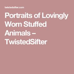 Portraits of Lovingly Worn Stuffed Animals – TwistedSifter