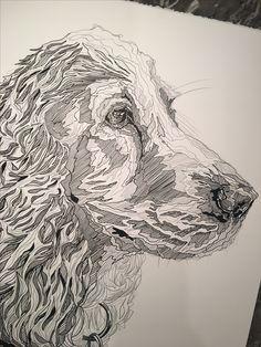 Commission   Charlotte Hawley Creative