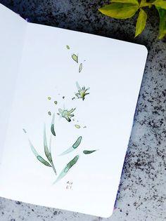 Những bông hoa của bé Thảo An - The flowers of my girl.