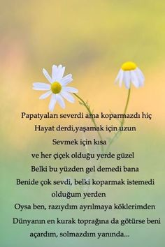 """""""Seninle cehennem cennet olur;sensiz cennet cehennem olur bana""""SS Wise Quotes, Book Quotes, Inspirational Quotes, Daisy Love, Good Sentences, Story Video, Real Love, Islamic Quotes, Cool Words"""