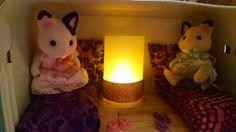 Lainie's lunch box doll house