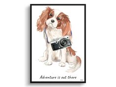 Adventure is out there Cavalier King Charles Spaniel dog print illustration. Framed & un-framed wall art Framed (Natural Wood) / King Charles Spaniel, Cavalier King Charles, Spaniel Dog, Dog Names, Adventure Is Out There, Fine Art Paper, Framed Wall Art, Giclee Print, Your Dog