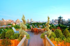 Roof top garden in the city uses evergreens in planters to frame the city view - traditional patio by Amber Freda Home & Garden Design