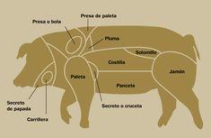Carne de cerdo: Razas, despiece y usos