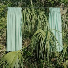 jungle curtains.