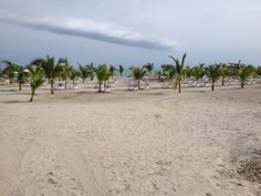 Beach at Riu Playa Blanca