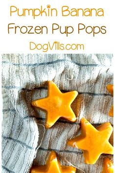 Healthy Dog Treats Homemade Frozen Pumpkin Banana Pup Pops Hypoallergenic Dog Treat Recipe - Cool Fido down on a hot summer day with a delicious frozen pumpkin banana hypoallergenic dog treat recipe! Whip it up in minutes! Puppy Treats, Diy Dog Treats, Healthy Dog Treats, Dog Biscuit Recipes, Dog Treat Recipes, Dog Food Recipes, Homemade Dog Cookies, Homemade Dog Food, Hypoallergenic Dog Treats