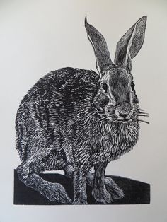 Woodblock print: Mathews Rabbit. $40.00, via Etsy.