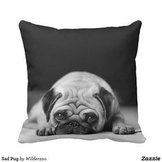 Follow the link to see this product on Zazzle! @zazzle #dog #dogs #dogstuff #dogpin #pet #pets #animals #animal #fun #buy #shop #shopping #sale #gift #dogowner #dogmom #dogdad #apartment #apartmentgoals #apartmenttherapy #home #decor #homedecor #bedroom #apartmenttherapy #throw #pillows #throwpillows #pillow #pug #pugs #cute #adorable