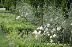 Garden Design, White People, Landscape Designs, Yard Design
