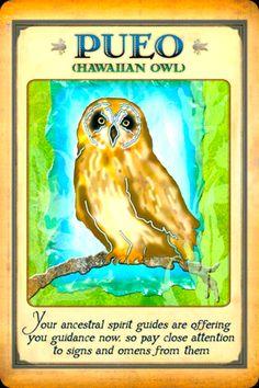 Spiritual Animal, Animal Spirit Guides, Animal Medicine, Angel Guide, Power Animal, Angel Cards, Animal Totems, Oracle Cards, Card Reading