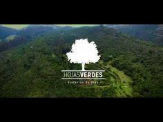 Regala Hojas Verdes – Otro sitio realizado con WordPress