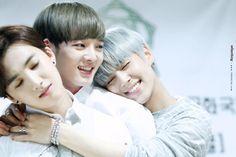Sungjun, Sunwoo, Suwoong // Boys Republic