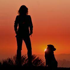 California sunset...woman's best friend.