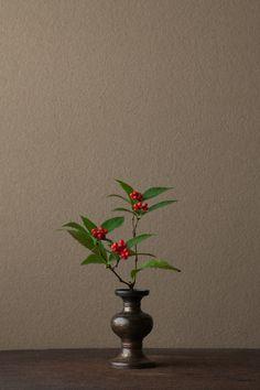 2012年1月25日(水)      美男葛の名は、粘りのある樹液を鬢付け油の代用にしたことから。  花=美男葛(ビナンカズラ)、薔薇(バラ)  器=古銅亜字形華瓶(鎌倉時代)