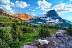 Озеро в Национальном парке Глейшер, Штат Монтана, США