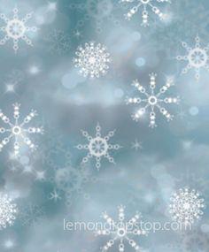 LemonDrop Stop Snow Flakes and Bokeh Blue | PolyPaper Photography Backdrops | LemonDrop Stop Photography Backdrops and FloorDrops