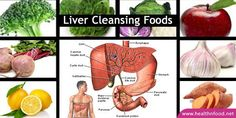 Here are 8 of the top liver-friendly foods to include in your diet, which aid in daily cleansing, rejuvenation, detoxification, and nourishment for the vital organ in your body.