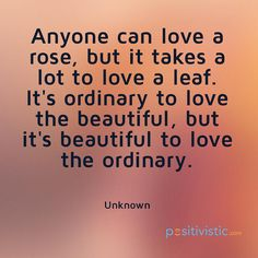 quote on the beauty of loving the ordinary: quote love rose leaf ordinary beautiful