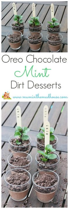 Oreo mint chocolate dessert plant posts. These fun pudding pots are a great take on dirt desserts and look amazing