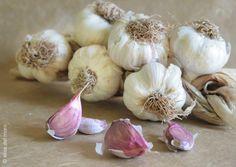 Este es ajo que sirve para aliñar el picado de perejil...¡es muy importante para poner apetitoso el nuestro capón!