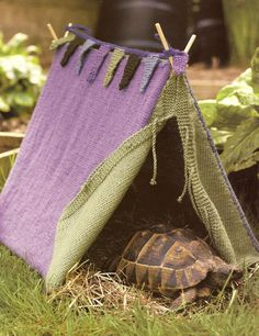 #Tortoise, tent I have a tortoise but I never thought about making him a tent. Wonder if he would like it Shared by Donna Merritt #Wedding Officiant #TheSimpleWedding.com