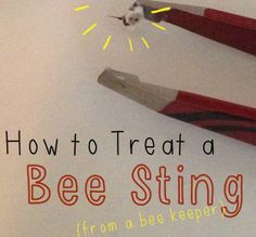 bee sting and what to do!