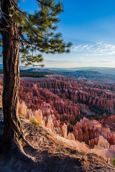 Bryce Canyon / Utah (by Pierre Bader).