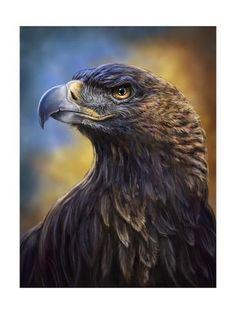 Trademark Global Patrick Lamontagne Golden Eagle Illustration Canvas Art - 37 x 49 Eagle Pictures, Animal Pictures, Eagle Wallpaper, Eagle Painting, Vogel Tattoo, Eagle Art, Eagle Tattoos, Golden Eagle, Exotic Birds