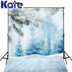 Find More Background Information about Kate Backdrop Frozen Snow Backgrounds For Photo Studio Winter Christmas Backdrop Photography Wood Floor Background,High Quality background black and white,China snow white make up Suppliers, Cheap background tv from Art photography Background on Aliexpress.com