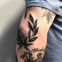 I really don't know what it is about wreath tattoos that are so appealing to me but I like them. I doubt I'd get one around my elbow but it's nice looking for other people.