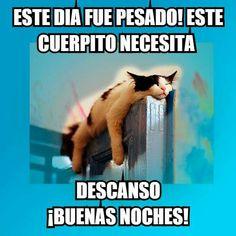 Buenas noches!! 😘😘